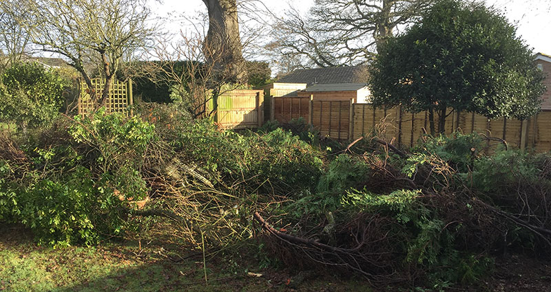 Plan b Garden Waste Removal Services Before
